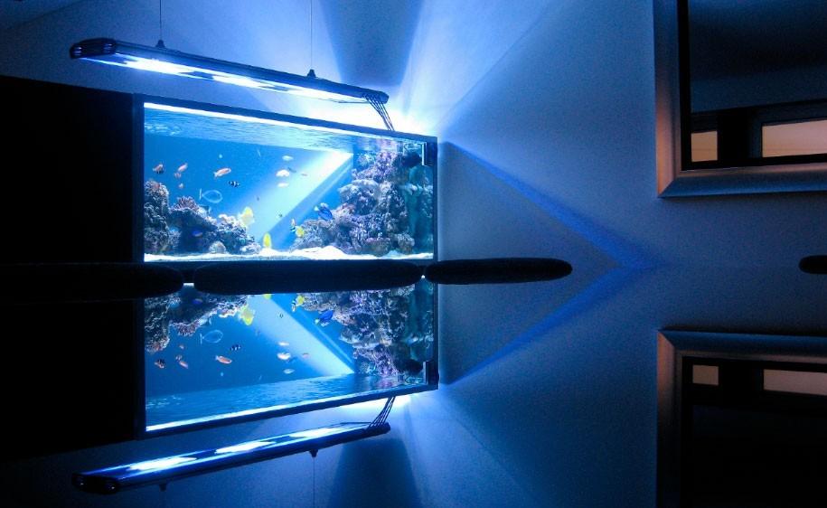 escorpiaointeriores-aquario-04